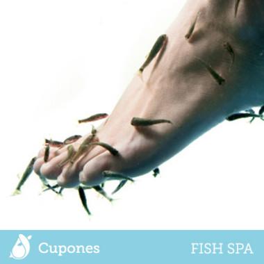 Cupones Fish Spa