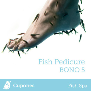 fish-pedicure-bono5