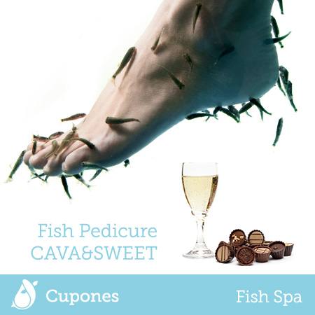 fish-pedicure-cava-sweet