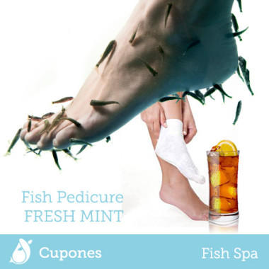 fish-pedicure-fresh-mint