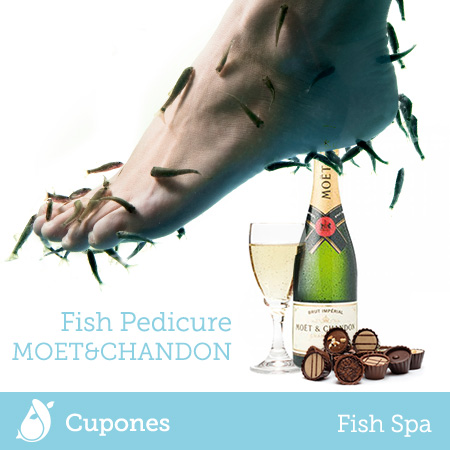 fish-pedicure-moet-chandon
