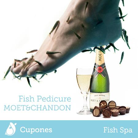 fish-pedicure-moet-chandon